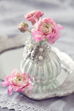 Beautiful pink  flowers . Stock Images