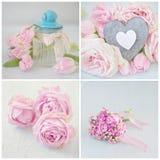 Beautiful pink  flowers . Stock Photo