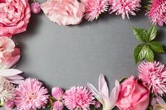 Beautiful pink flowers frame Stock Photos