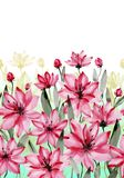 Beautiful pink flowers with green stems and leaves on white background. Seamless floral pattern. Watercolor painting. Hand painted botanical illustration vector illustration