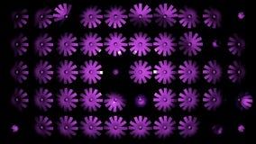 Beautiful Pink flowers stock video footage