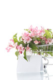 Beautiful pink flowers in the truck Royalty Free Stock Photography
