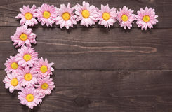 Beautiful pink flowers on the wooden background for designing yo Stock Photo