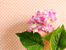 Beautiful pink hydrangea of artificial flowers bouquet Stock Photography