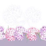 Beautiful Pink Hydrangea Seamless Floral Border Stock Photo