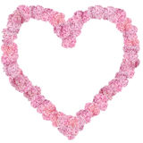 Beautiful Pink hydrangeas heart-shaped flower frame. Stock Photo