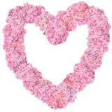Beautiful Pink hydrangeas heart-shaped flower frame. Royalty Free Stock Photos