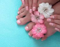 Beautiful pink manicure and pedicure with flowers. On a blue background royalty free stock image
