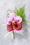 Beautiful pink orchid corsage Royalty Free Stock Photo