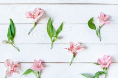 Beautiful pink orchids with green leaves on wooden table Royalty Free Stock Image