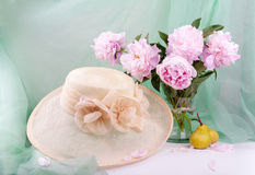 Beautiful pink peonies Stock Photos