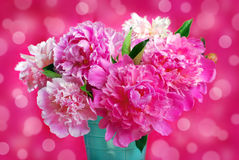 Beautiful pink peony bouquet in vase Royalty Free Stock Photo