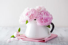 Beautiful pink peony flowers bouquet in vase Royalty Free Stock Image