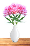 Beautiful pink peony flowers in white vase on table Royalty Free Stock Photos