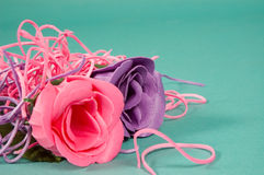 Beautiful pink and purple rose. On green royalty free stock photos