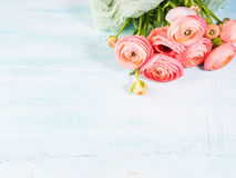 Beautiful pink ranunculus bouquet on turquoise Royalty Free Stock Images