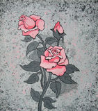 Beautiful pink rose. On an abstract grey background. painting Royalty Free Stock Photos