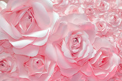 Beautiful pink rose background Royalty Free Stock Photos