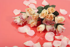 Beautiful pink rose bouquet and petals Royalty Free Stock Photos