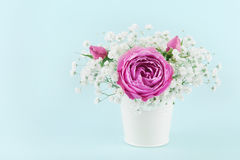 Beautiful pink rose flower and gypsophilla in white vase on turquoise vintage table. Royalty Free Stock Photography