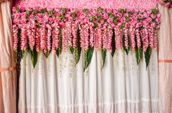 Beautiful pink rose flower wedding backdrop Stock Photo