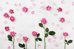 Beautiful pink rose flowers on white table top view. Wedding mockup in flat lay style. Stock Images