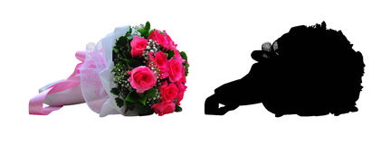 Beautiful pink rose, isolated. And Black Picture for die cut Royalty Free Stock Image
