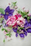 Beautiful pink, rose peonies and violett purple clematis flowers on white wood plate. Can be used as background Royalty Free Stock Photography