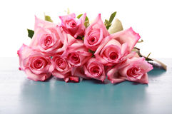 Beautiful pink roses Royalty Free Stock Photos