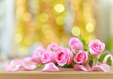 Beautiful pink roses and bokeh background Stock Image