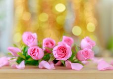 Beautiful pink roses and bokeh background Royalty Free Stock Image