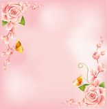 Beautiful Pink Roses Border Stock Images