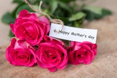 Pink roses bouquet with Happy Mother`s day tag card. Beautiful pink roses bouquet with Happy Mother`s day tag card Royalty Free Stock Photos