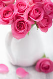 Beautiful pink roses bouquet in vase Royalty Free Stock Photography