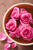 Beautiful pink roses bouquet in vase Royalty Free Stock Photos