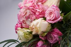Beautiful pink roses , close up. Part of rose bouquet. Stock Photography