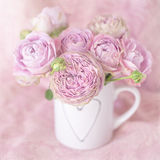 Beautiful pink roses flowers . Stock Photo