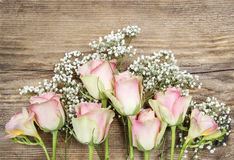 Beautiful pink roses and freesia flowers Stock Photo