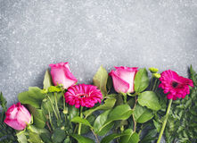 Beautiful pink roses and gerberas border on light grey backgroun Royalty Free Stock Photos