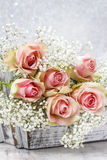 Beautiful pink roses and Gypsophila (Baby's-breath flowers) Royalty Free Stock Photography