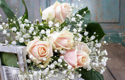 Beautiful pink roses and gypsophila paniculata (Baby's-breath Royalty Free Stock Image