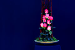 Beautiful pink roses in porcelain vase Royalty Free Stock Photography
