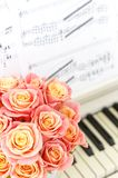 Beautiful pink roses in a round box on the piano. Roses in a Hat Box. Beautiful pink roses in a round box on the piano stock photo