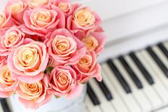 Beautiful pink roses in a round box on the piano. Roses in a Hat Box. Beautiful pink roses in a round box on the piano royalty free stock photo