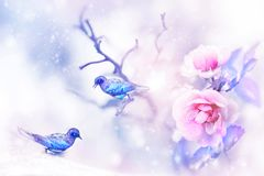 Beautiful pink roses and small purple and blue fantastic birds in the snow and frost. Artistic spring and winter natural image. Se royalty free illustration