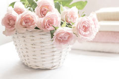 Beautiful, pink roses in a white basket close up. Beautiful, pink roses  in a white basket close up and pastel towels Royalty Free Stock Image