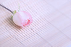 Beautiful pink roses on wooden background Royalty Free Stock Photos