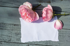 Beautiful, pink roses on wooden, rustic background with white paper and copy space Royalty Free Stock Photo