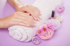 Beautiful pink and silver manicure with flowers and spa essentials. On purple background Stock Photography
