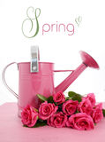 Beautiful pink Spring time watering can Stock Photography
